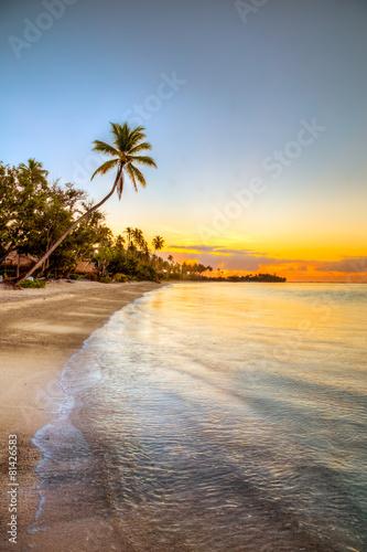 Papiers peints Caraibes isole caraibiche di polinesia con palme e tramonto