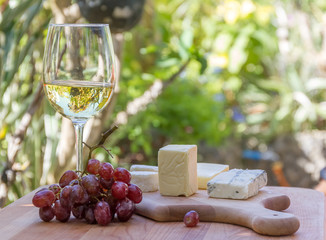 different types of cheese with wine and grapes on natural backgr
