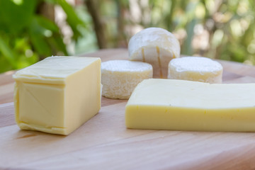 different types of cheese on natural background