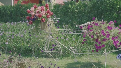 Vintage style bicycles adorned with basket of flowers in garden