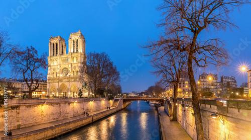 Cathedral Notre Dame Paris - 81431977