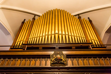 Crest Under Organ Pipes