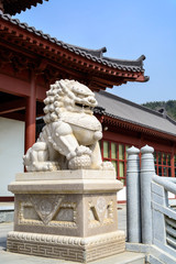 Stone lion statue in chinese temple