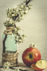 Blütenzweig mit Apfel