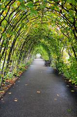 arched arbour - Kensington Gardens