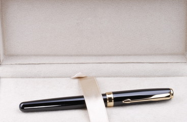 fountain pen in case