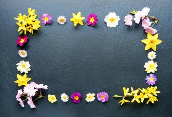 Rahmen aus Frühlingsblumen auf Schiefer
