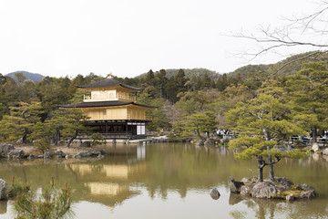The golden palace of Kyoto (Kinkakuji)