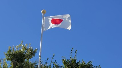 National flag of Japan waving in the wind.