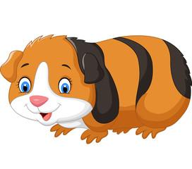 Cartoon cute guinea pig