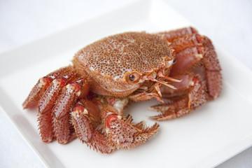 hair crab