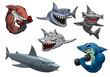 Angry grey, white and hammerhead sharks cartoon characters - 81440386