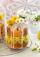 Russian Easter cake Kulich with raisin and dried cherry