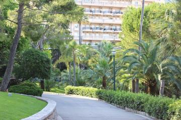 Дорога в парке Монако