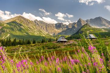 Polish Tatra mountains Hala Gąsienicowa