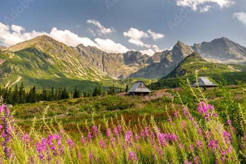 Polish Tatra mountains Hala Gąsienicowa © Marcin Mrówka