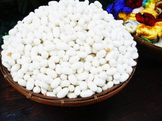 White cocoons