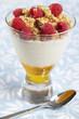 Breakfast with honey, yogurt, raspberry, and muesli