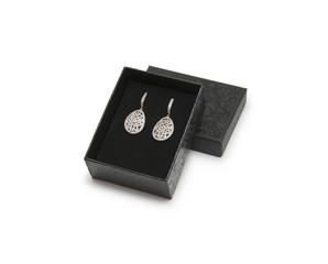 Luxury earrings in box
