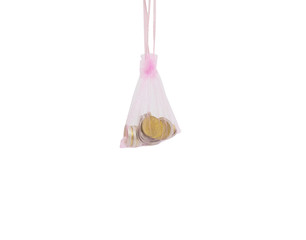 Coins in bag isolated on the white background