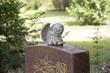 schlafender Engel auf Grabstein - 81456308