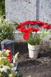 Leinwanddruck Bild - Rote Gerbera und Grablicht