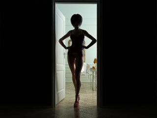 Sexy  female standing  in the bedroom doorway