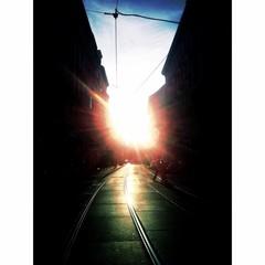 The vienna Sunset