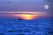 Sailboat Ocean Moon LightNight  Journey - 81460592