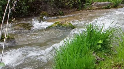 River landscape en slow motion