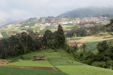 agricultural lands in Guatemala