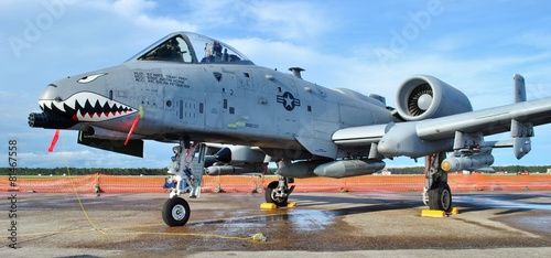 Canvas Vliegtuig A-10 Warthog/Thunderbolt Jet