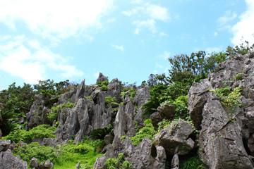 沖縄の岩山