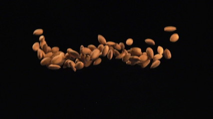 SLOW: Almonds fly up and fall