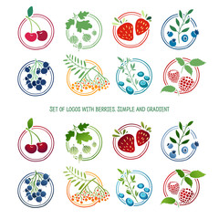 Set of logos, signs, badges, labels with berries and herbs