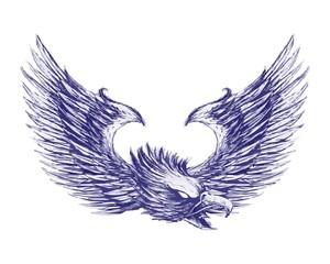 bird eagle hawk falcon logo image vector