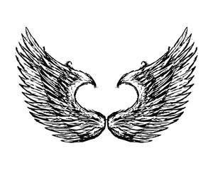 wing bird eagle hawk falcon logo image vector