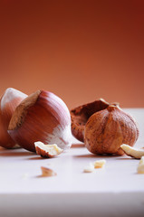 Group of  hazelnuts on a white table vertical composition