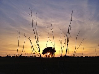 Sunset Salento