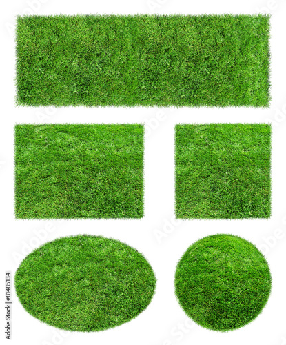 Backgrounds of green Grass Isolated - 81485134