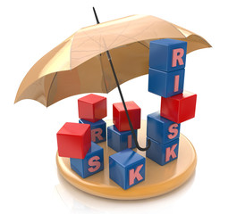 Risk protection Concept
