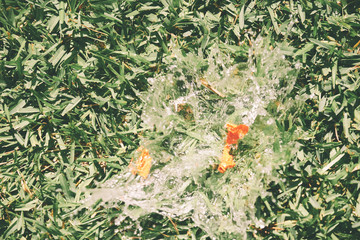 Water balloon splash against grass