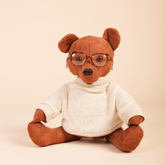 Bear dressed and with glasses