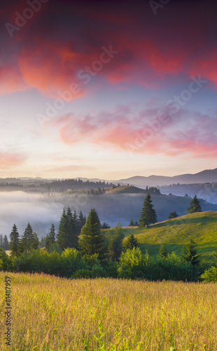 Papiers peints Morning Glory Colorful summer sunrise in the foggy mountains.