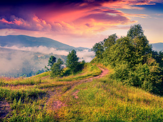 Colorful summer sunrise in a foggy mountains.