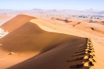 Spuren im Sand der Namib-Wüste