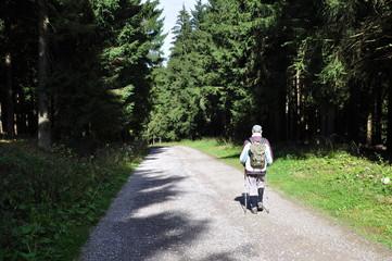 einsamer Wanderer auf dem Rennsteig