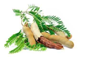 Fresh Tamarind with leaves on white background