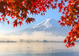 Fototapety Autumn Season and Mountain Fuji