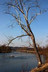 Rudern auf der Donau